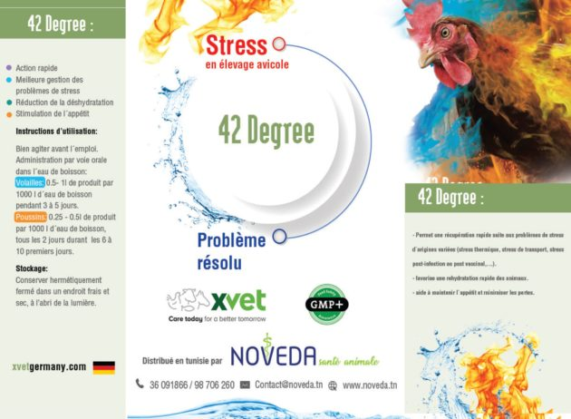 42 Degree : Additif pour volailles