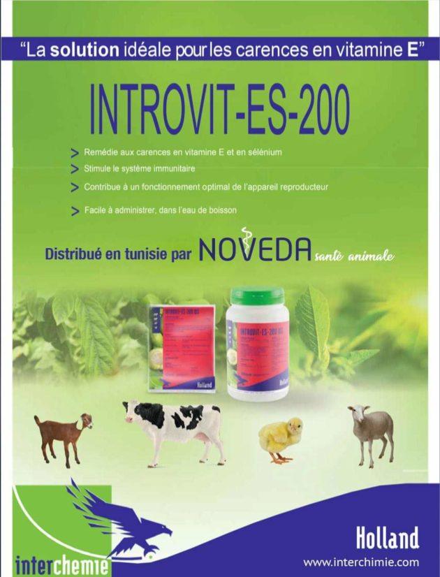 Introvit ES-200: Additif pour bovins, ovins, caprins et volailles